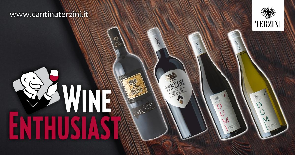 wine enthusiast Cantina terzini